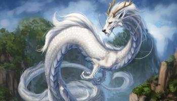 Risultati immagini per shenlong chinese dragon