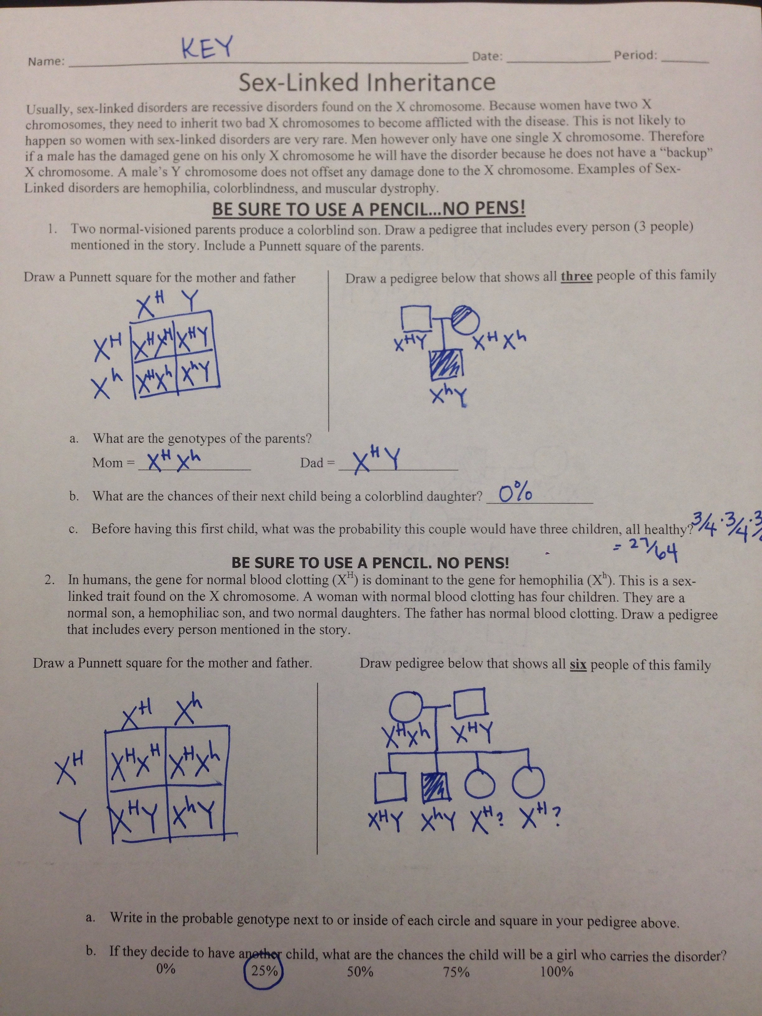 11 3 Exploring Mendelian Genetics Worksheet