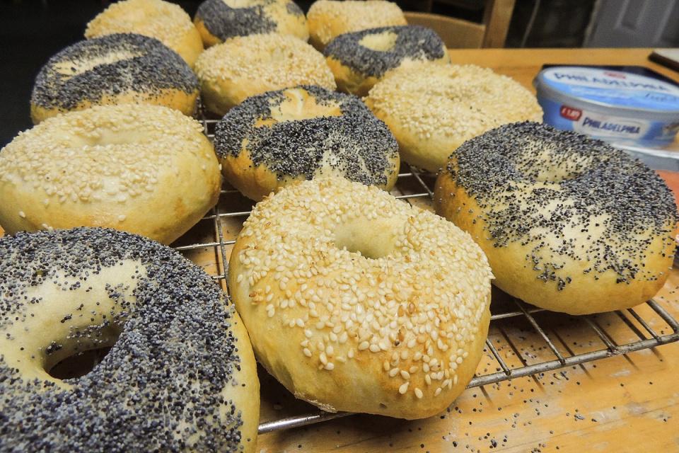 Backblip: Bagels