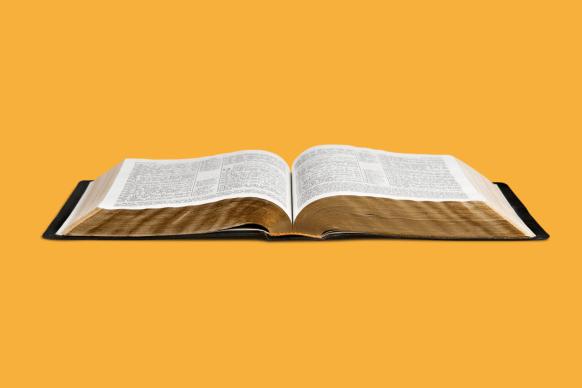 Sleep Bible