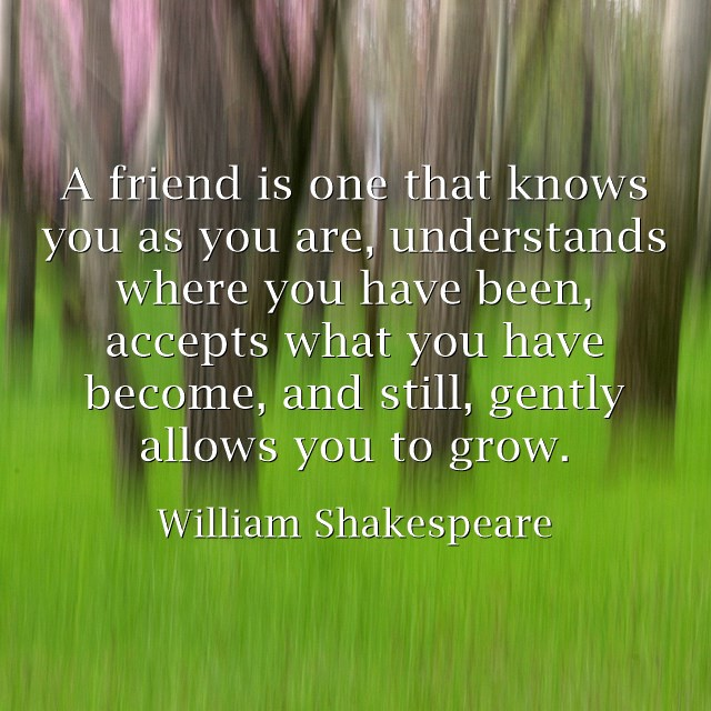 A friend is one that knows you as you are, understands where you have been, accepts what you have become, and still, gently allows you to grow.  - William Shakespeare