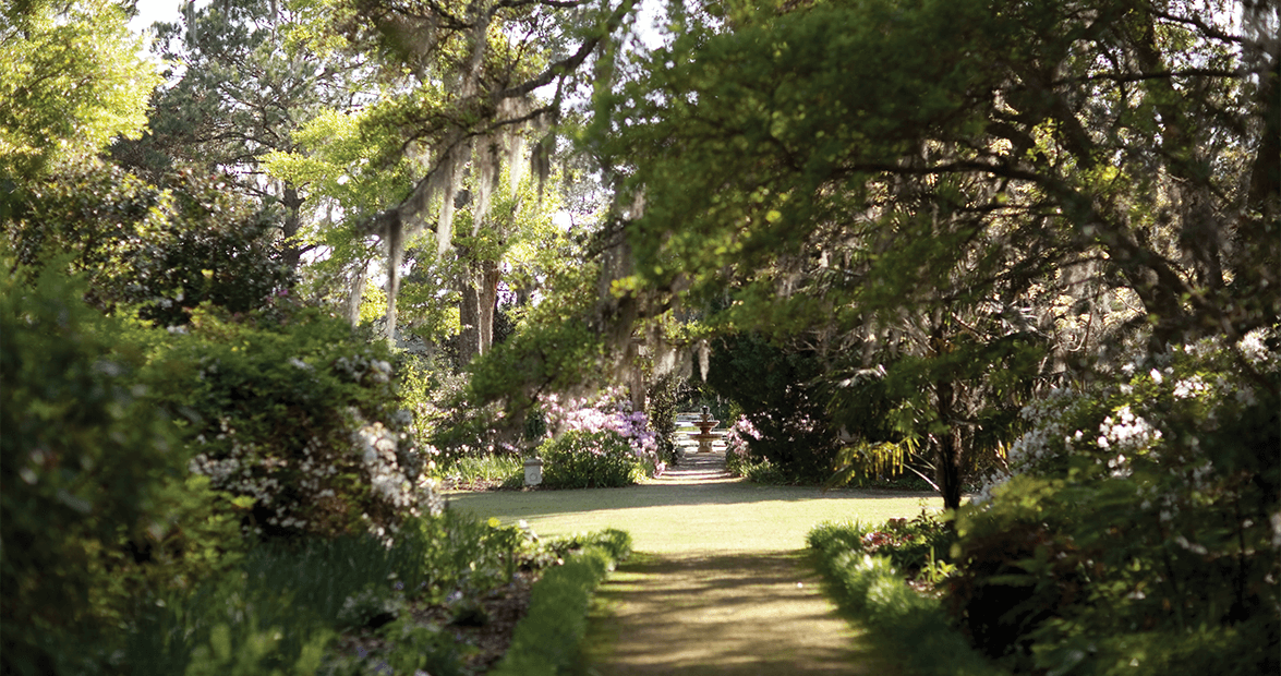 The Story Of Airlie Gardens In Wilmington Our State Magazine
