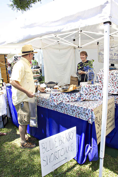 Vendors offer all sorts of blueberry treats at the N.C. Blueberry Festival.