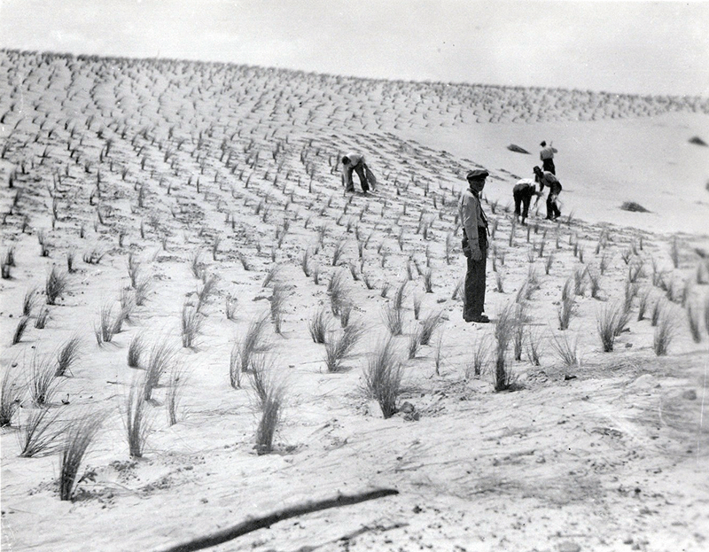 Photography Courtesy National Park Service, Cape Hatteras National Seashore Collection