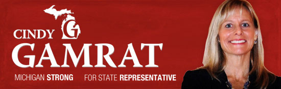 Cindy Gamrat for State Representative