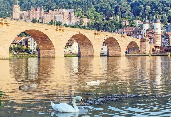 Heidelberg Day Trip w/ Frankfurt City Tour
