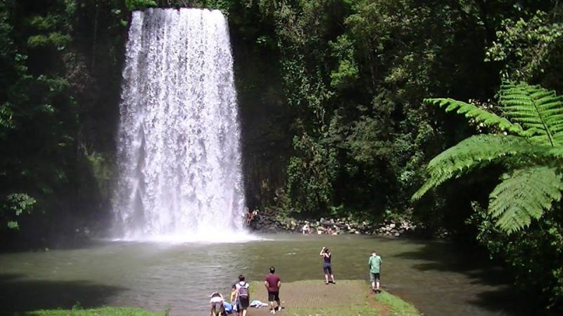 Tablelands Waterfalls Day Tour From Cairns