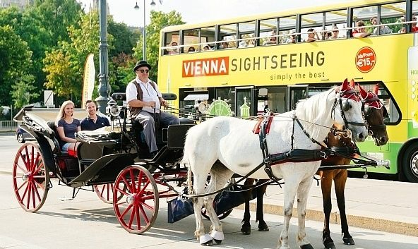Vienna Hop-On, Hop-Off Tour w/ Horse Drawn Carriage Ride