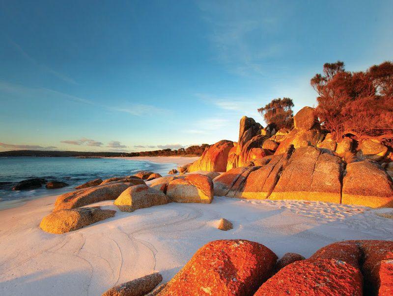 6-Day A Taste of Tasmania Adventure Tour