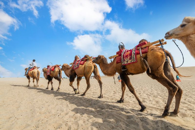 8-Day the Highlights of China Silk Road from Lanzhou to Kashgar