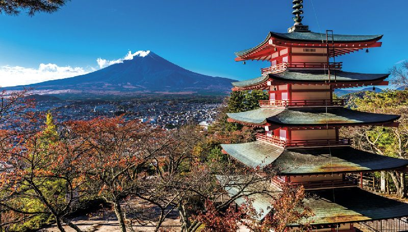 11-Day Japan Tour Package: Tokyo to Osaka