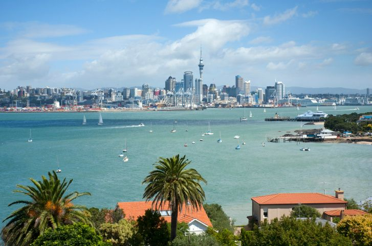 Highlights Auckland City Tour + Waiheke Island Wine Tour