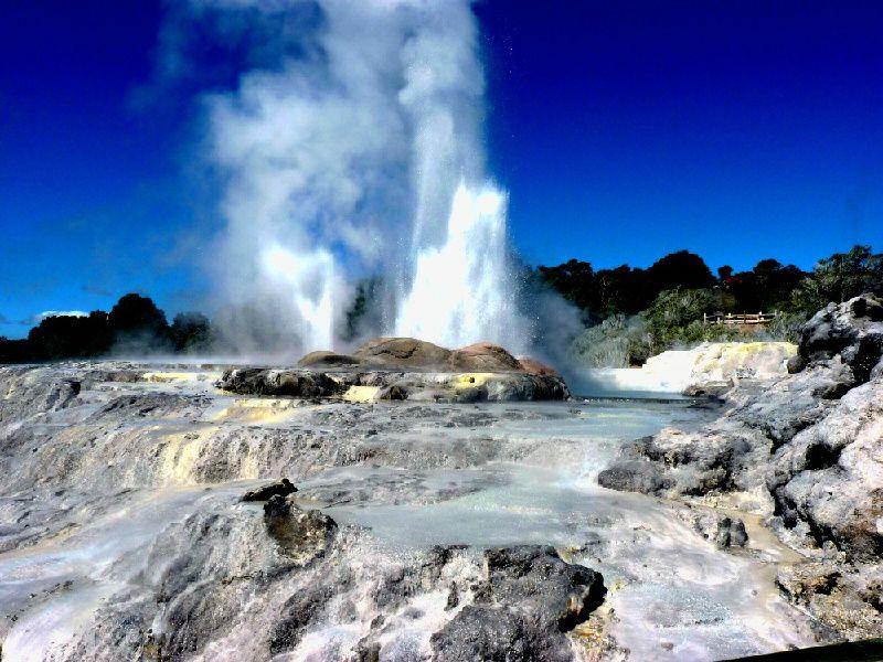 5-Day Rotorua Self-Drive Tour From Auckland W/ Waitomo & Hobbiton