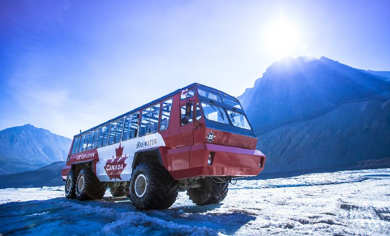 Columbia Icefield Discovery Tour From Jasper W/ Glacier Adventure & Glacier Skywalk