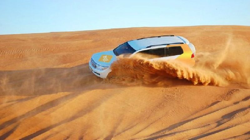 Dubai 4x4 Desert Safari W/ Sand Boarding, Camel Ride, & Falcon Flying