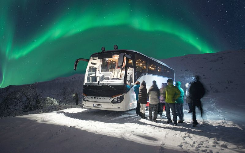 Tromso Northern Lights Hunt by Bus