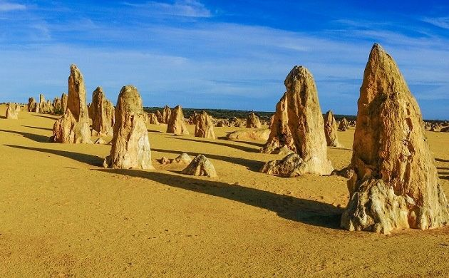 1-Day Pinnacles, Koalas, Sand Boarding, and 4WD Adventure
