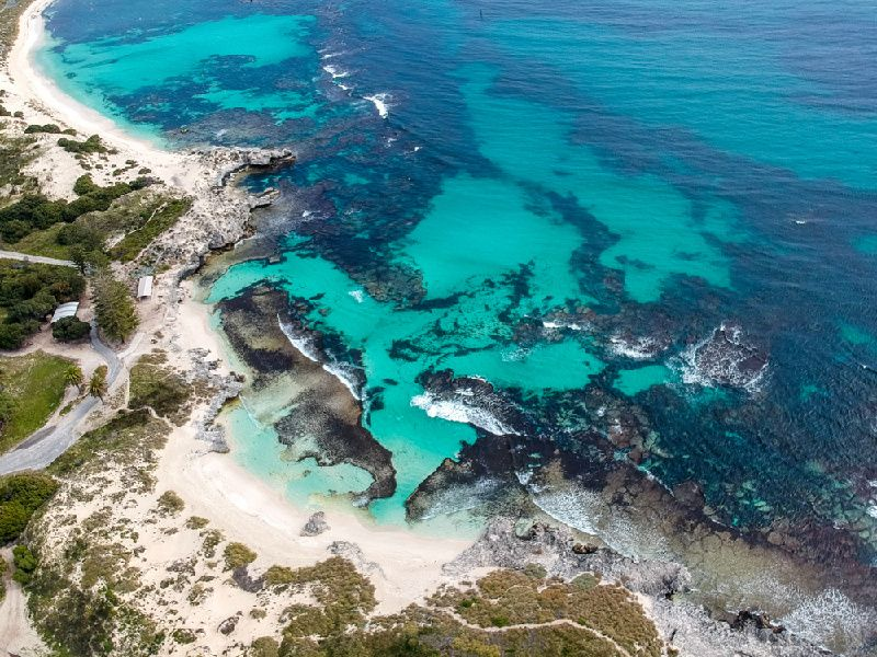 Rottnest Island Wild Seafood Experience from Perth W/Hotel Transfer