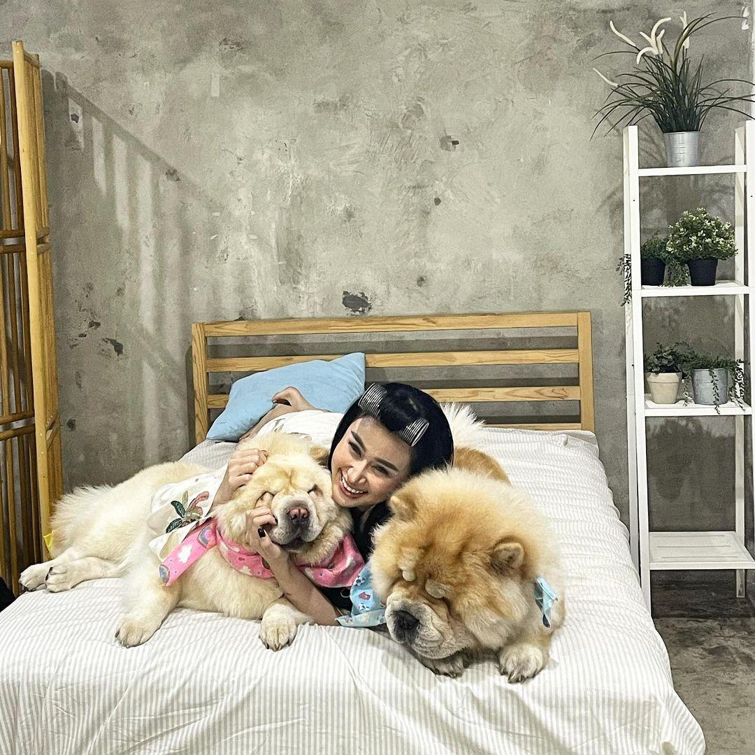 Kerap Dihujat dan Dimusuhi Oleh Warganet, Ini 5 Potret Rumah Denise  Chariesta | Rumah123.com
