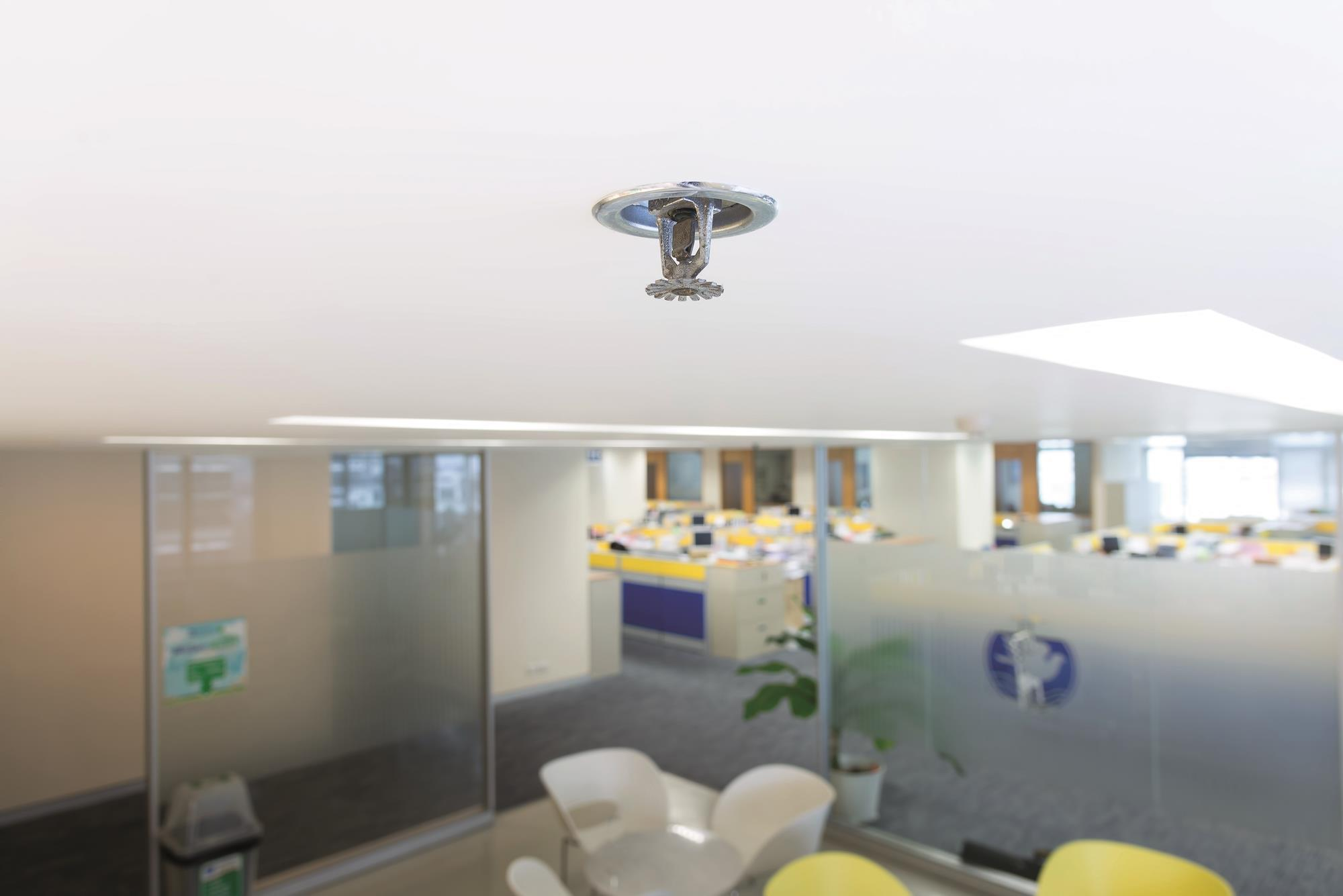 Cpd 24 Automatic Sprinkler Systems And Building