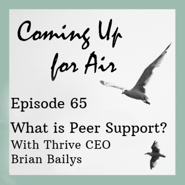 Podcast #65 What is Peer Support? — With Thrive CEO Brian Bailys