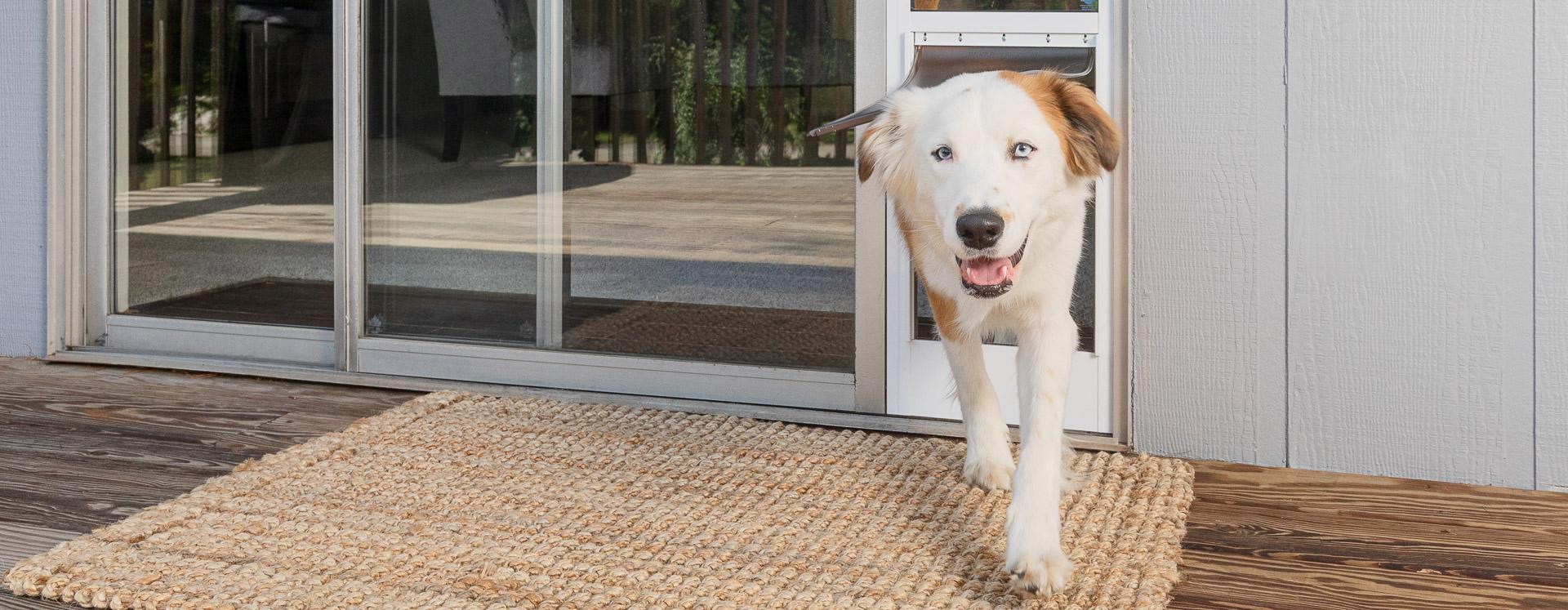 Pet Patio Door Panels Sliding Door Dog Door Inserts Petsafe