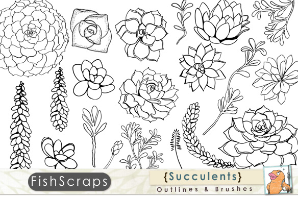 Succulent Outlines Photoshop Brush Illustrations On
