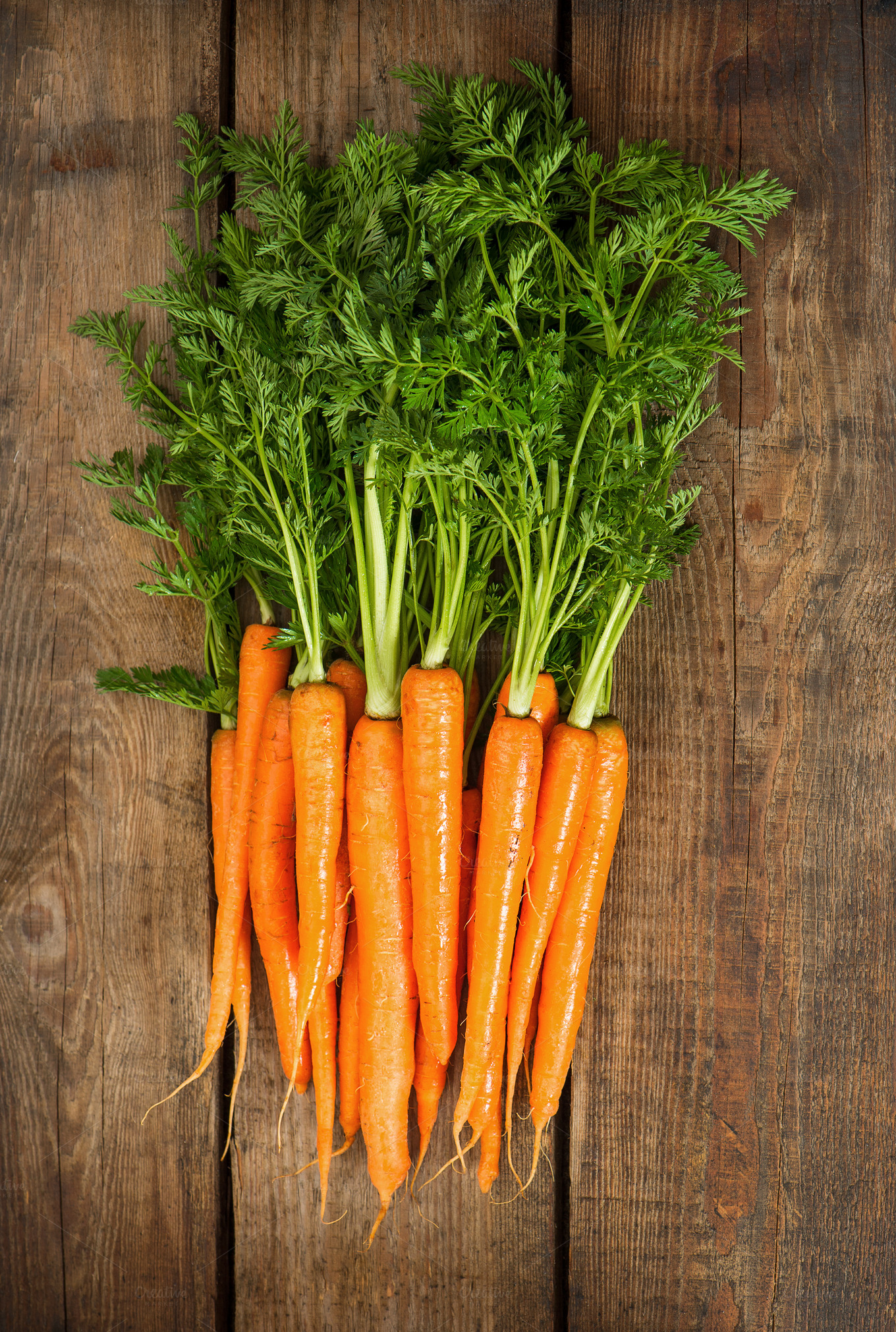 Fresh Carrots With Green Leaves Food Amp Drink Photos On Creative Market