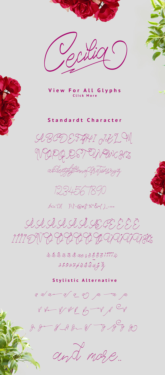 Best cursive, hand lettered fonts that are affordable and perfect for cards and crafts and all kinds of projects where you need a beautiful handwritten font.