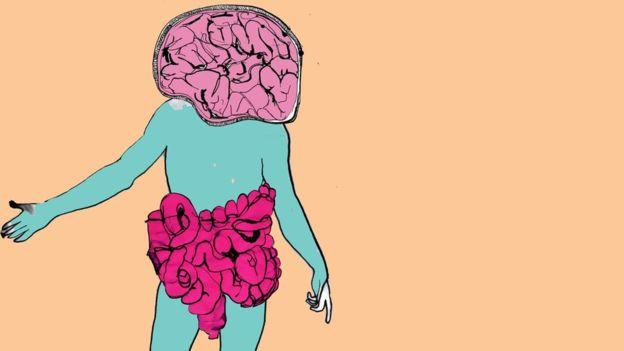 """""""Lo interesante de un sistema inmune adaptativo es que necesita datos, igual que nuestro cerebro"""", dice Graham Rook, profesor de microbiología."""