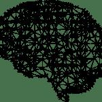 Network in shape of a human brain