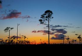 Miami South Florida self-drive motorcycle tour, Key West