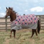 Weatherbeeta Western Blanket Range