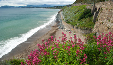 Bucht von Neapel in Killiney