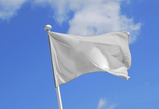 Image result for images of McConnell and white flag