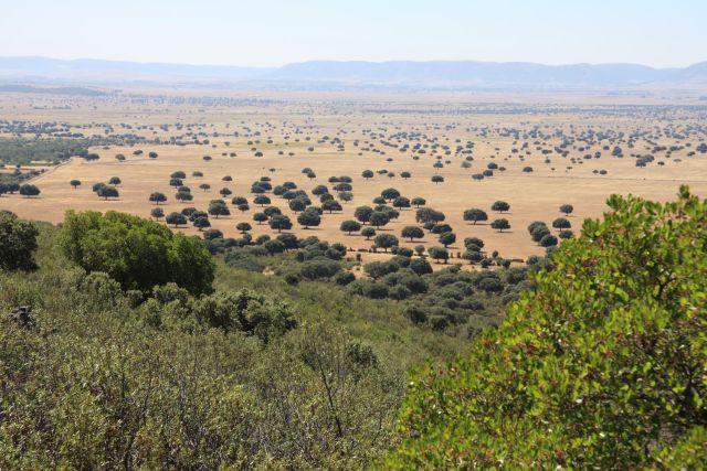 El Supremo ratifica la ilegalidad de las construcciones dentro del Parque Nacional de Cabañeros