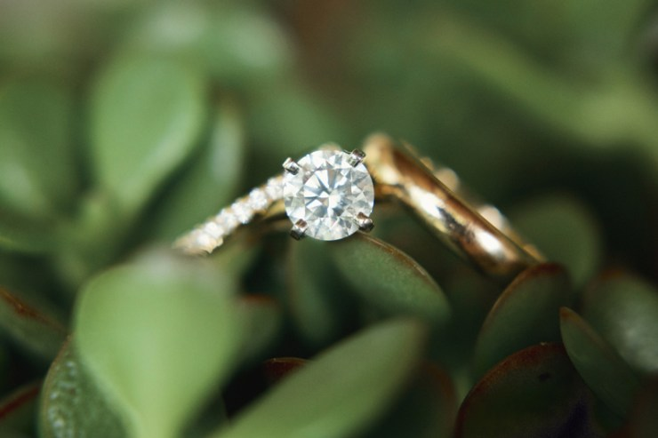 Wedding rings in foliage