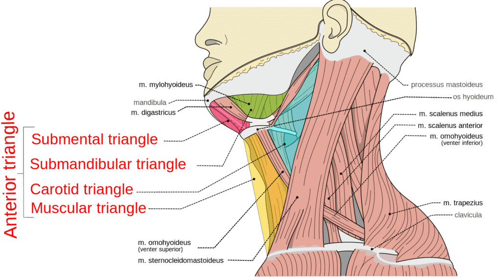 how to use a pillow for neck pain and
