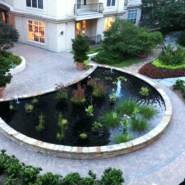 Onze tuin in Atlanta (2014)