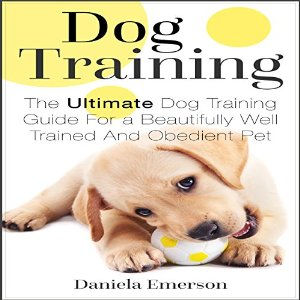 EmersonDogTraining