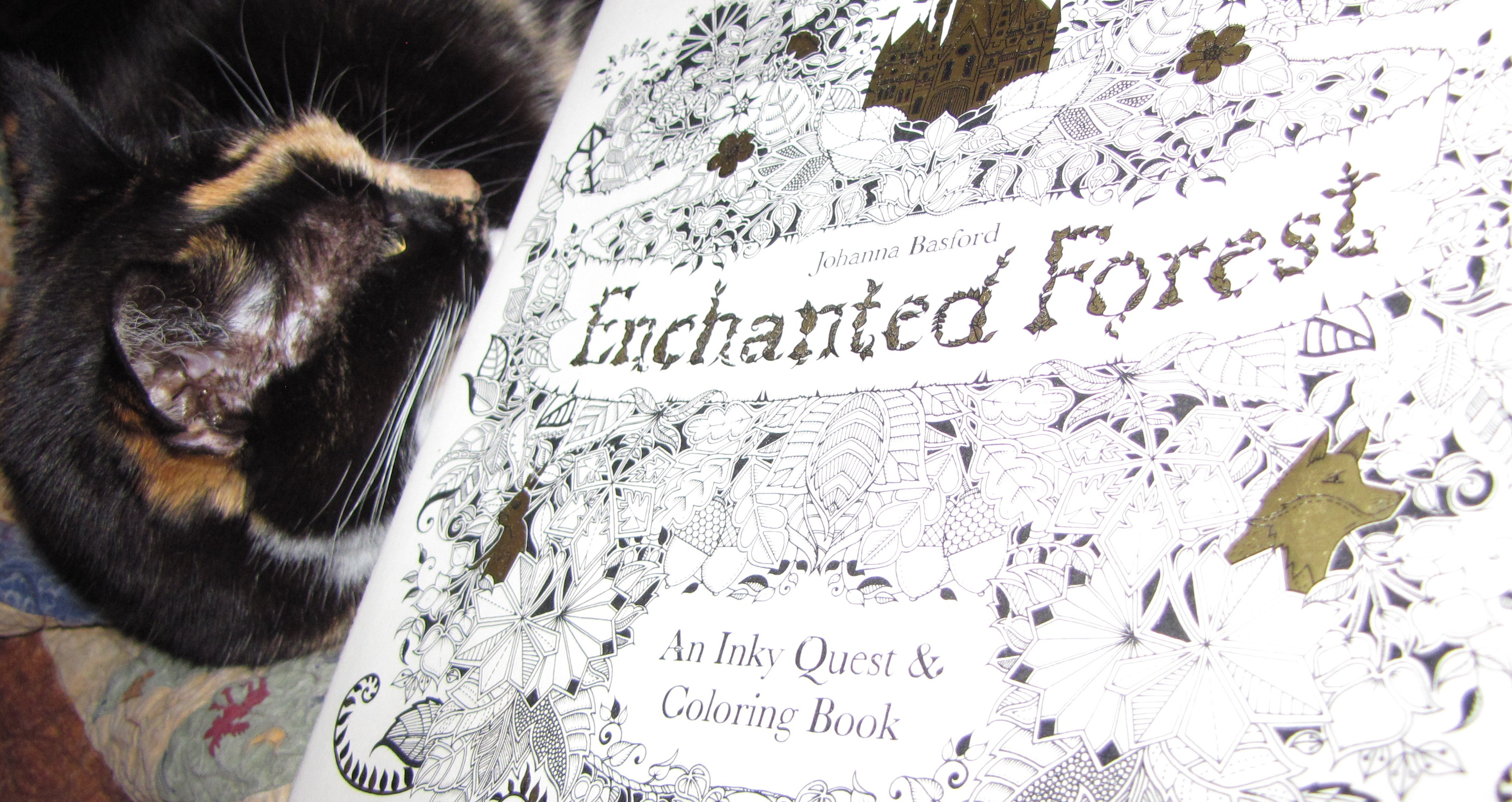 Enchanted Forest An Inky Quest Coloring Book By Johanna Basford Good Cat What Else Does One Need