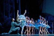 2012-ballet-el-lago-de-los-cisnes-parada-paul-foto-genitti
