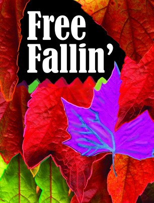 Free Fallin' (after adding outline)