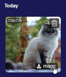 download-magic-copy