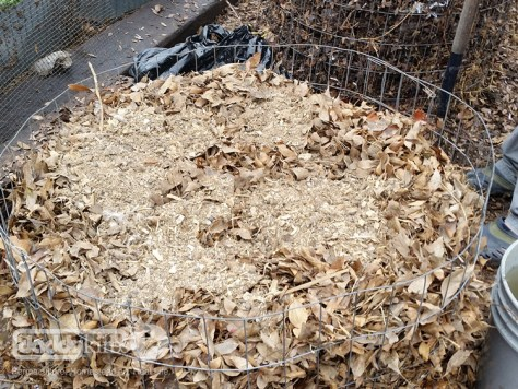 Compost Recipes - Adding Manure To Pile