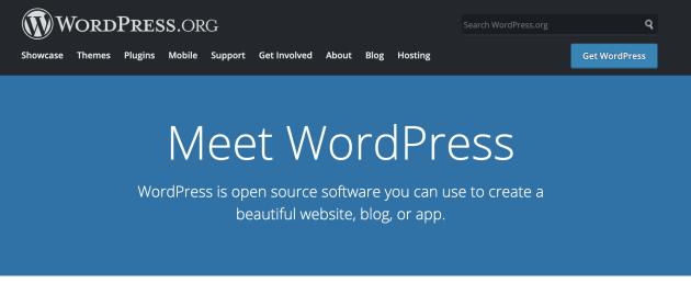 Wordpress is best CMS for blogging