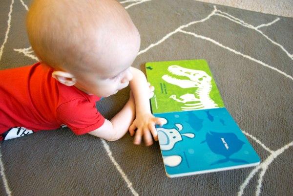 Child-Reading-Larry-Loves-Chicago