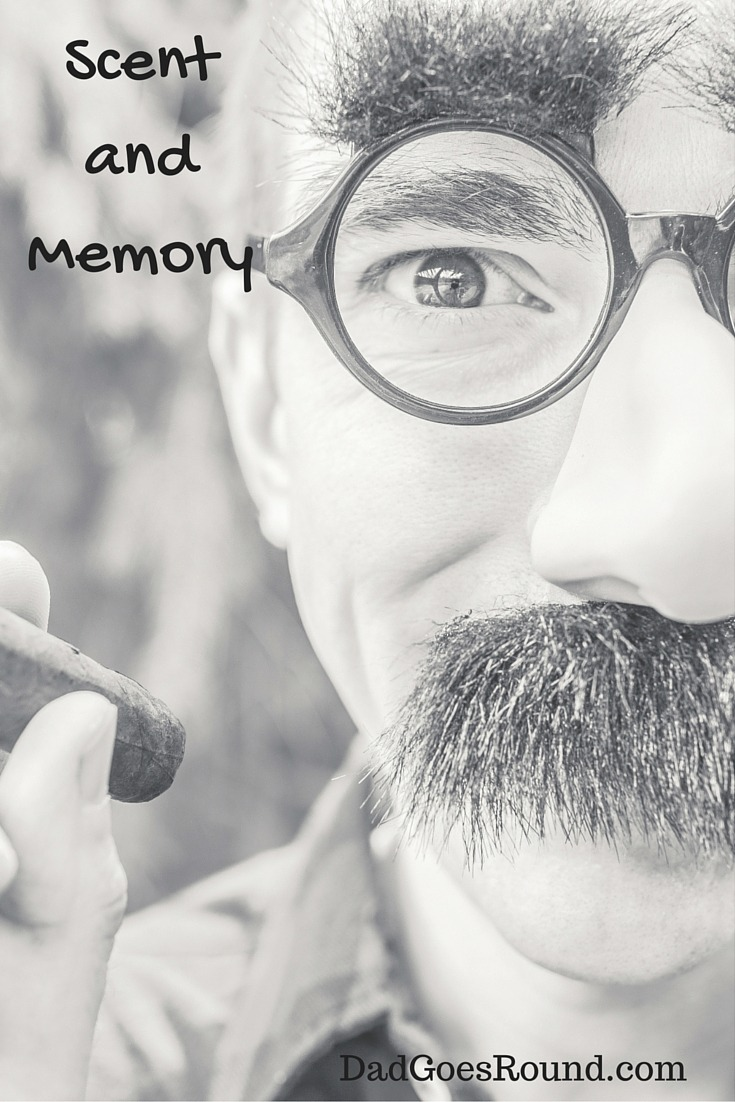 Scent and memory   Dad Goes Round   Scent is a powerful memory stimulant. Smells can pull us back to rich childhood memories at unexpected times and places.