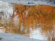lagoon reflections (inspired by Doug)
