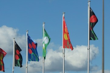 Floriade flags